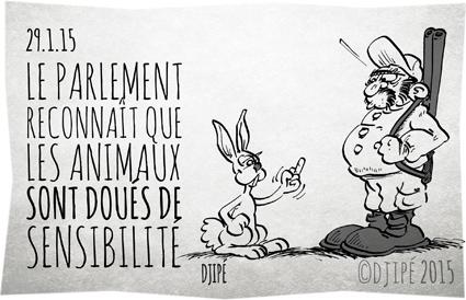 animaux, caricatures, chasseurs, code civil, dessin de presse, dessinateur, Djipé, droits des animaux, être sensible, humour, humour noir, lapins, parlement, Sénat, sensibilité, statut animal,