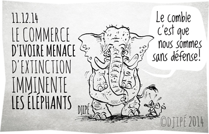 braconnage, caricatures, Chine, commerce, contrebande, défense de l'environnement, dessin de presse, dessinateur, Djipé, éléphants, extinction, humour, humour noir, Iain Douglas-Hamilton, ivoire, massacre, ONG, Save the Elephants, The Aspinall Foundation,