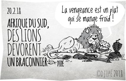 Afrique, braconnier, caricatures, chasse, Chine, dessin de presse, dessin satirique, dessinateur, Djipé, humour noir, Krüger, lion, maltraitance, mort, trafic,
